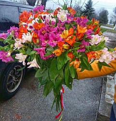 Заказ цветов с доставкой сургут онлайн
